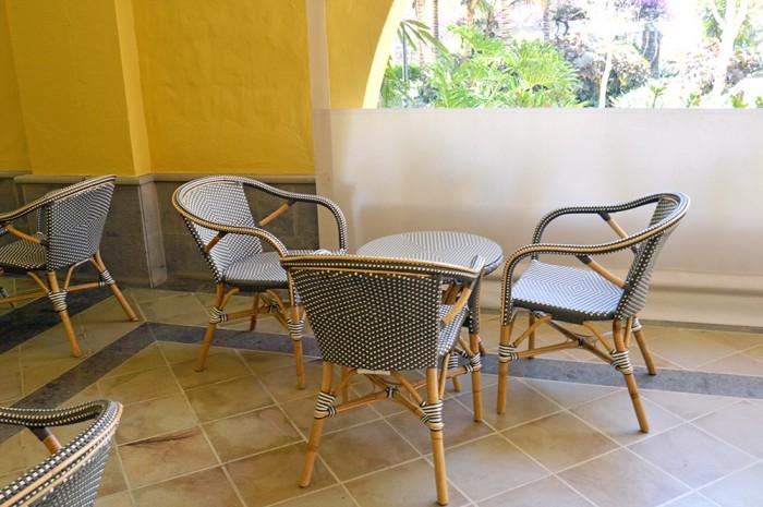 palm-oasis-terraza